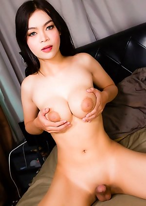 Asian Ladyboy photos